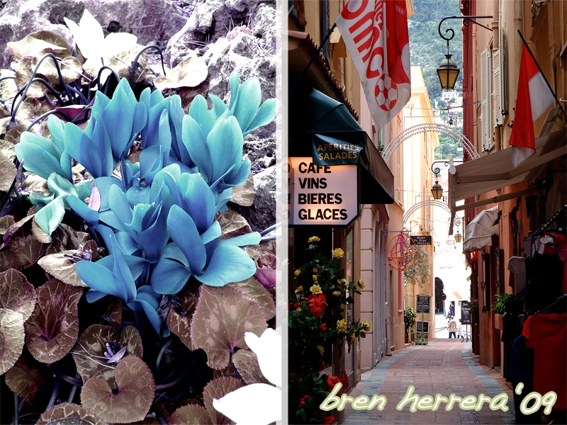 monacovillestreetflowercollage Shopping, Cooking & Eating in Monaco With a Caramelized Banana & French Hotdog Pasta Teaser