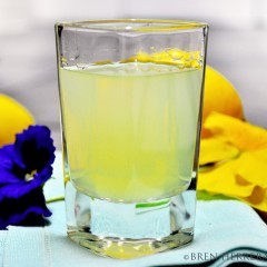 Limoncelloshot