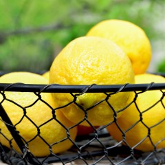 Lemonsinbasket