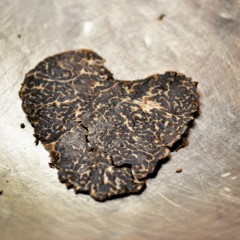 truffleheart
